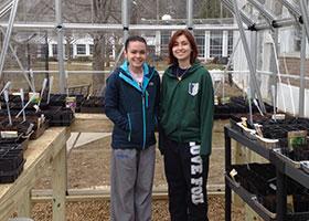 Greenhouse-Planting-2
